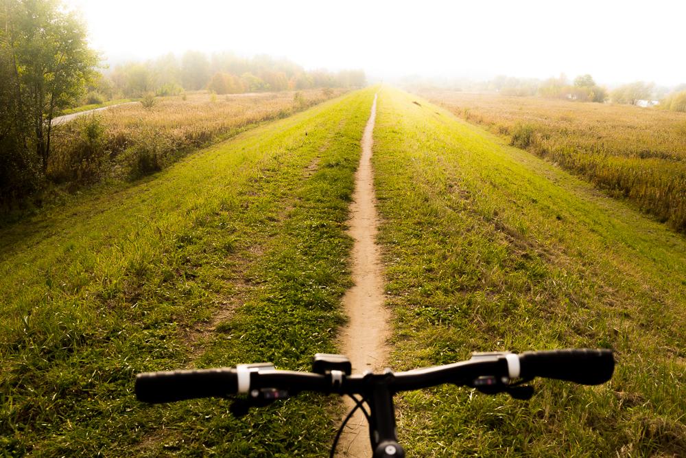 path tyniec